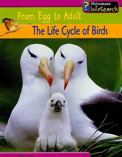 The Life Cycle of Birds - Trade Paperback/Paperback