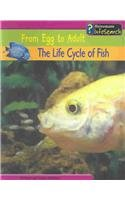 LIFE CYCLE OF FISH, THE