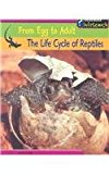 The Life Cycle of Reptiles - Trade Paperback/Paperback, illustrated edition