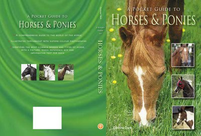 POCKET GUIDE TO HORSES & PONIES, A