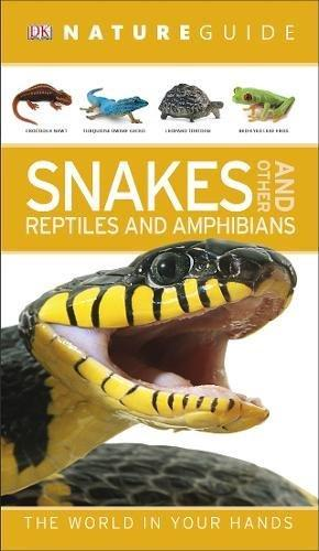 Nature Guide Snakes and Other Reptiles and Amphibians - Paperback