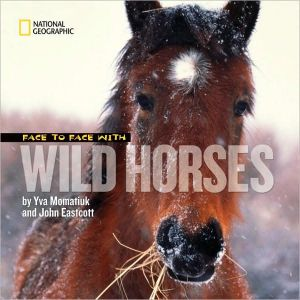 Face to Face with Wild Horses - Hardback