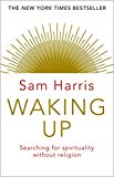 Waking Up: Searching for Spirituality Without Religion - Paperback